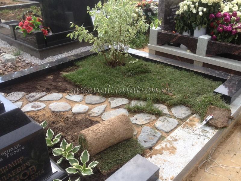 Какие цветы сажают на могилах православных название и фото